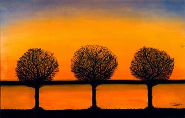 El misterio de los árboles